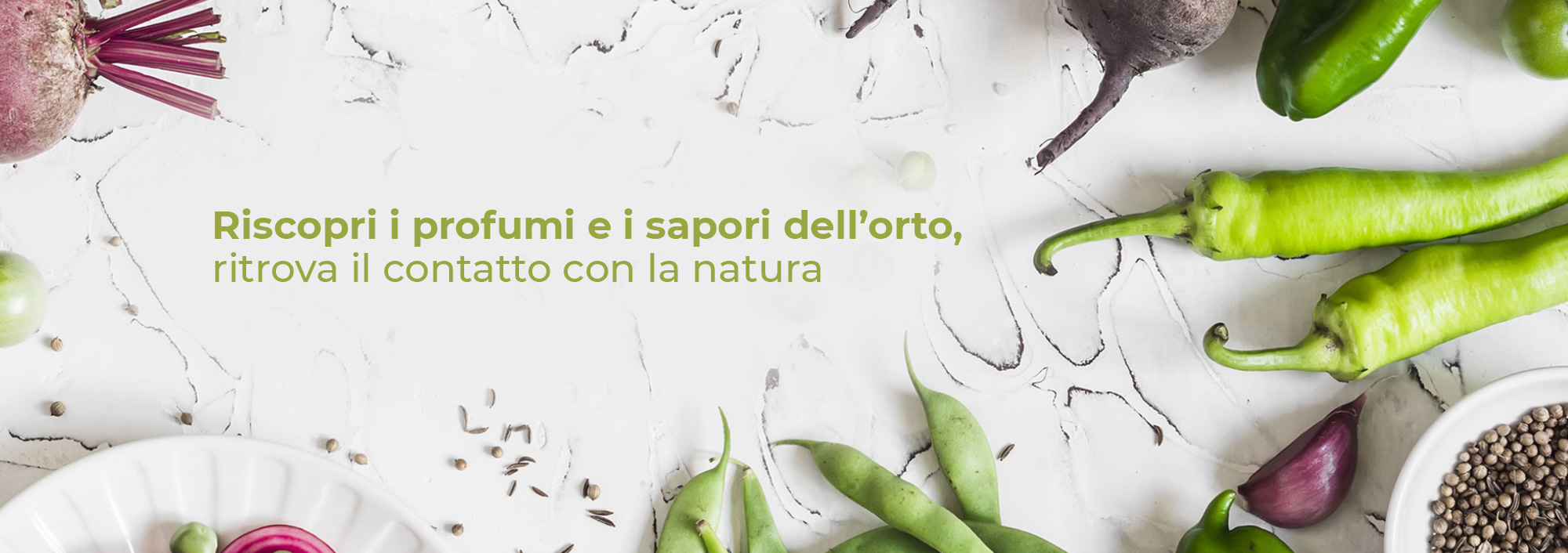 SedanoRapa gastronomia di cucina vegetale Gallarate